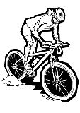 Mountain Bike Illustration Sport